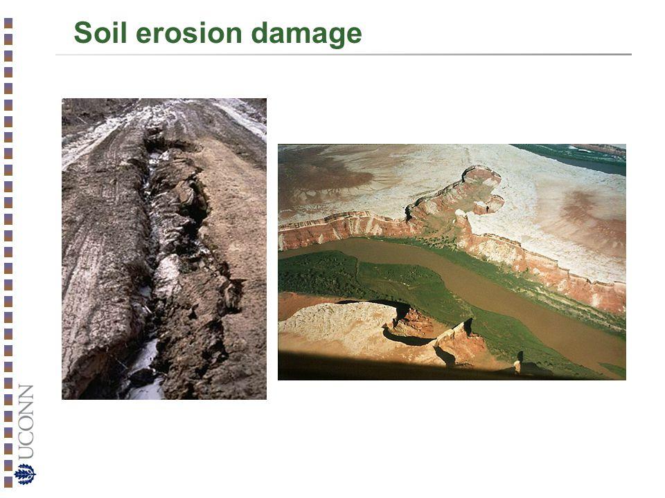 Soil erosion damage