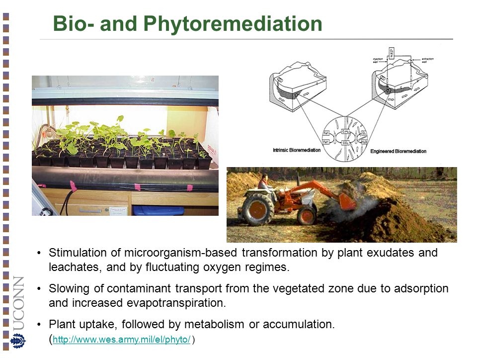 Bio- and Phytoremediation Stimulation of microorganism-based transformation by plant exudates and leachates, and by fluctuating oxygen regimes.