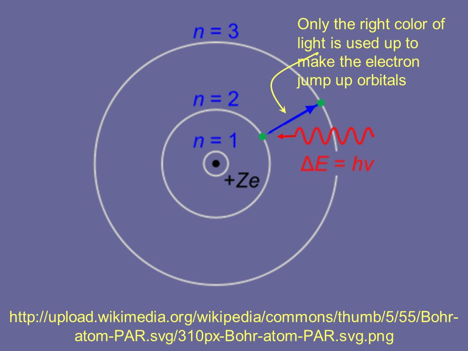 http://upload.wikimedia.org/wikipedia/commons/thumb/5/55/Bohr- atom-PAR.svg/310px-Bohr-atom-PAR.svg.png Only the right color of light is used up to make the electron jump up orbitals