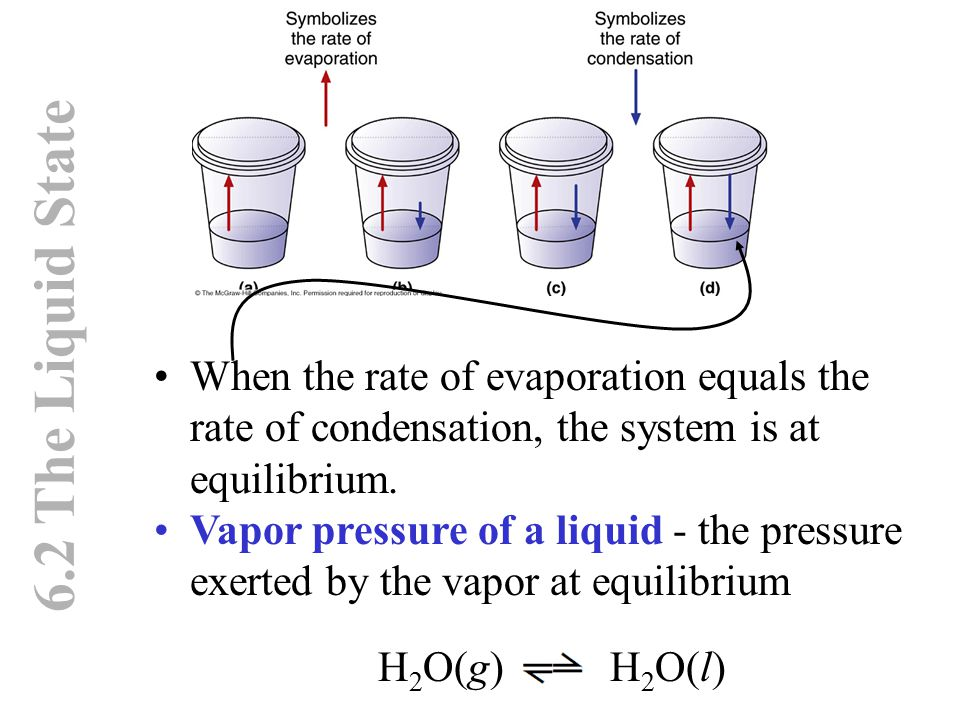 6.2 The Liquid State When the rate of evaporation equals the rate of condensation, the system is at equilibrium. Vapor pressure of a liquid - the pres