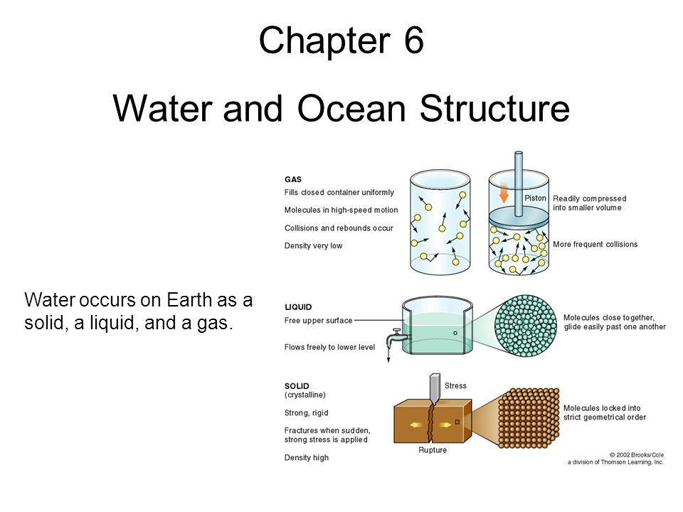 The Water Molecule A water molecule is composed of two hydrogen atoms and one oxygen atom.