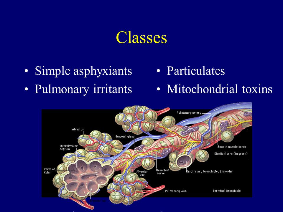 Classes Simple asphyxiants Pulmonary irritants Particulates Mitochondrial toxins