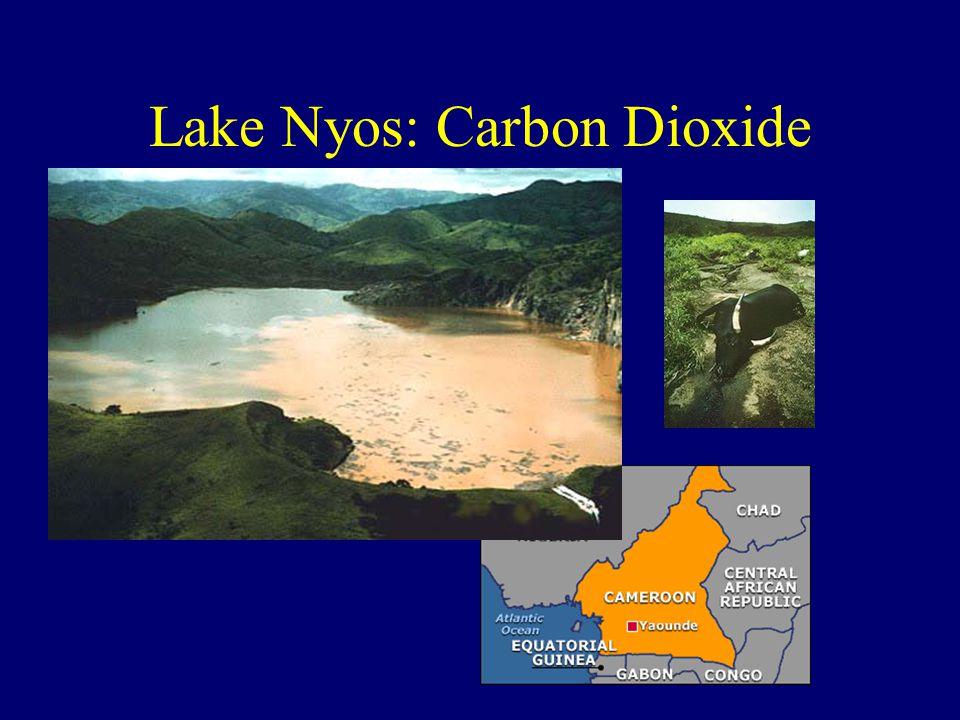 Lake Nyos: Carbon Dioxide