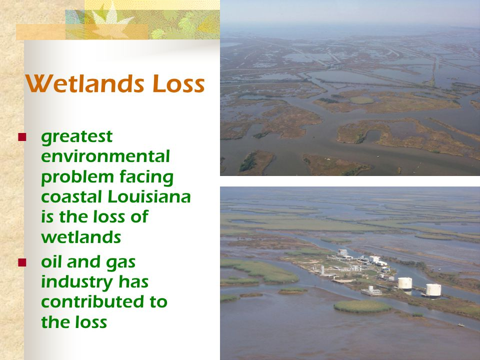 Wetlands Loss greatest environmental problem facing coastal Louisiana is the loss of wetlands oil and gas industry has contributed to the loss