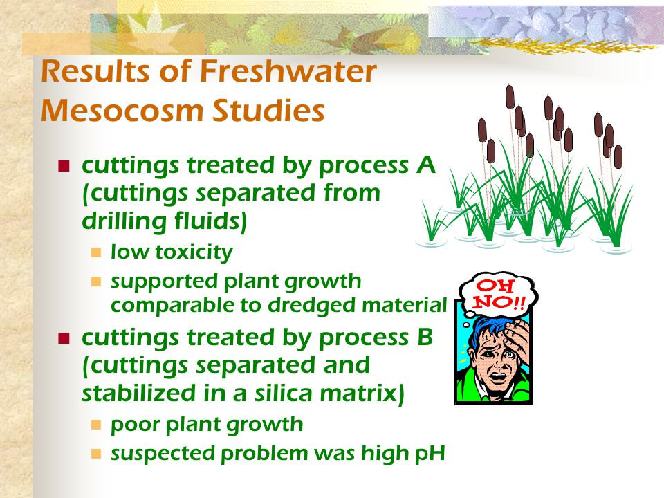 Results of Freshwater Mesocosm Studies cuttings treated by process A (cuttings separated from drilling fluids) low toxicity supported plant growth comparable to dredged material cuttings treated by process B (cuttings separated and stabilized in a silica matrix) poor plant growth suspected problem was high pH