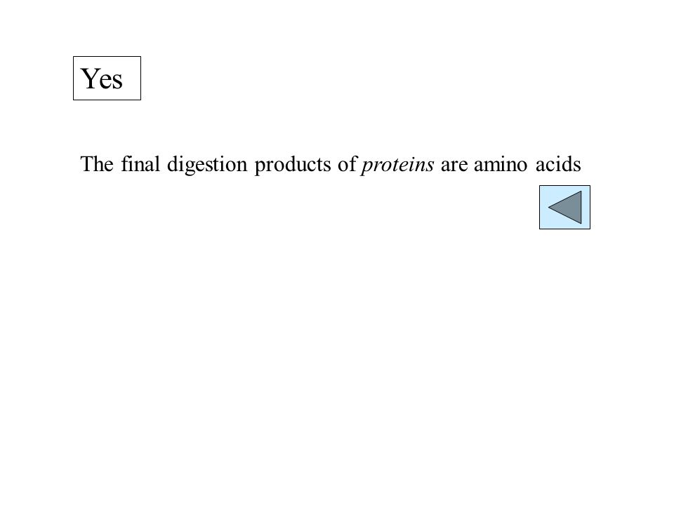 Yes The final digestion products of proteins are amino acids