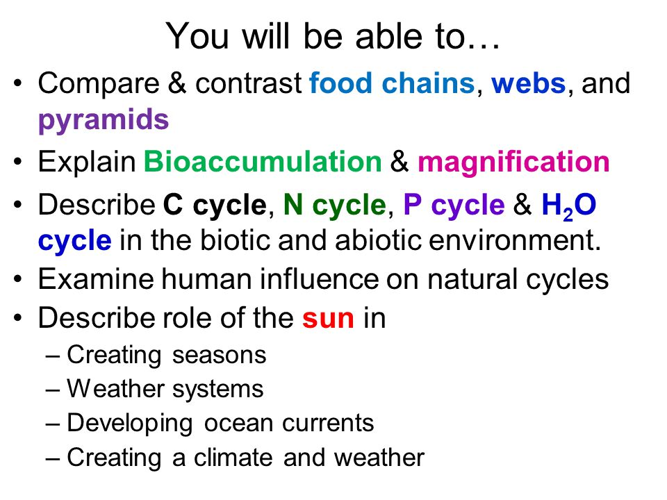 You will be able to… Compare & contrast food chains, webs, and pyramids Explain Bioaccumulation & magnification Describe C cycle, N cycle, P cycle & H