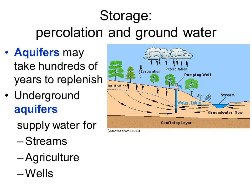 Storage: percolation and ground water Aquifers may take hundreds of years to replenish Underground aquifers supply water for –Streams –Agriculture –We