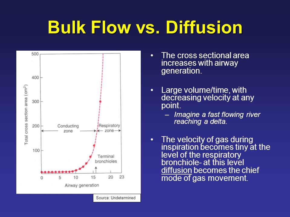 Bulk Flow vs. Diffusion The cross sectional area increases with airway generation.
