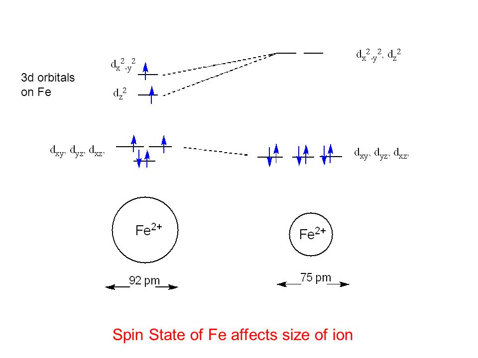 3d orbitals on Fe Spin State of Fe affects size of ion