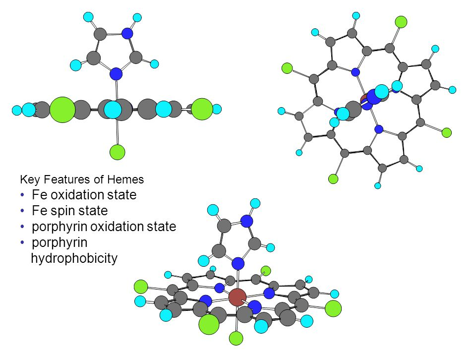 Key Features of Hemes Fe oxidation state Fe spin state porphyrin oxidation state porphyrin hydrophobicity