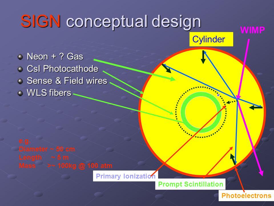 SIGN conceptual design Neon + . Gas CsI Photocathode Sense & Field wires WLS fibers e.g.