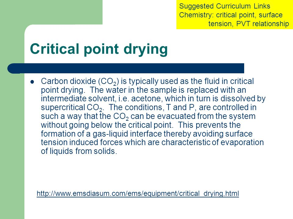 Critical point drying Carbon dioxide (CO 2 ) is typically used as the fluid in critical point drying.