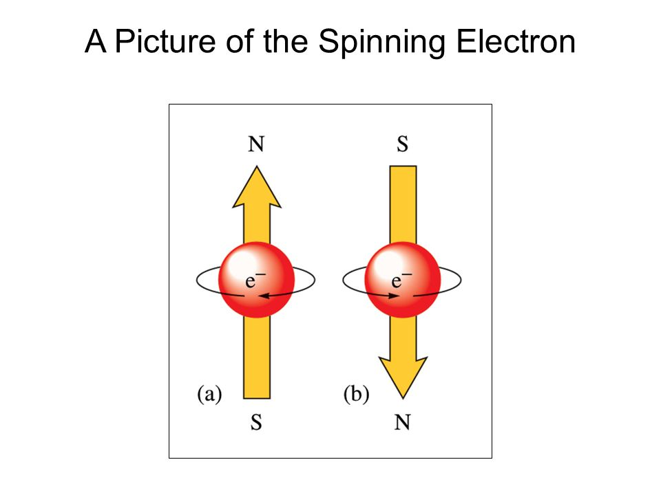 A Picture of the Spinning Electron