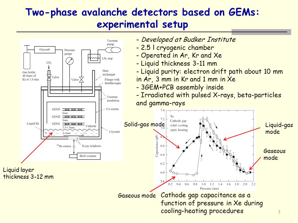 7 Two-phase avalanche detectors based on GEMs: experimental setup - Developed at Budker Institute - 2.5 l cryogenic chamber - Operated in Ar, Kr and X