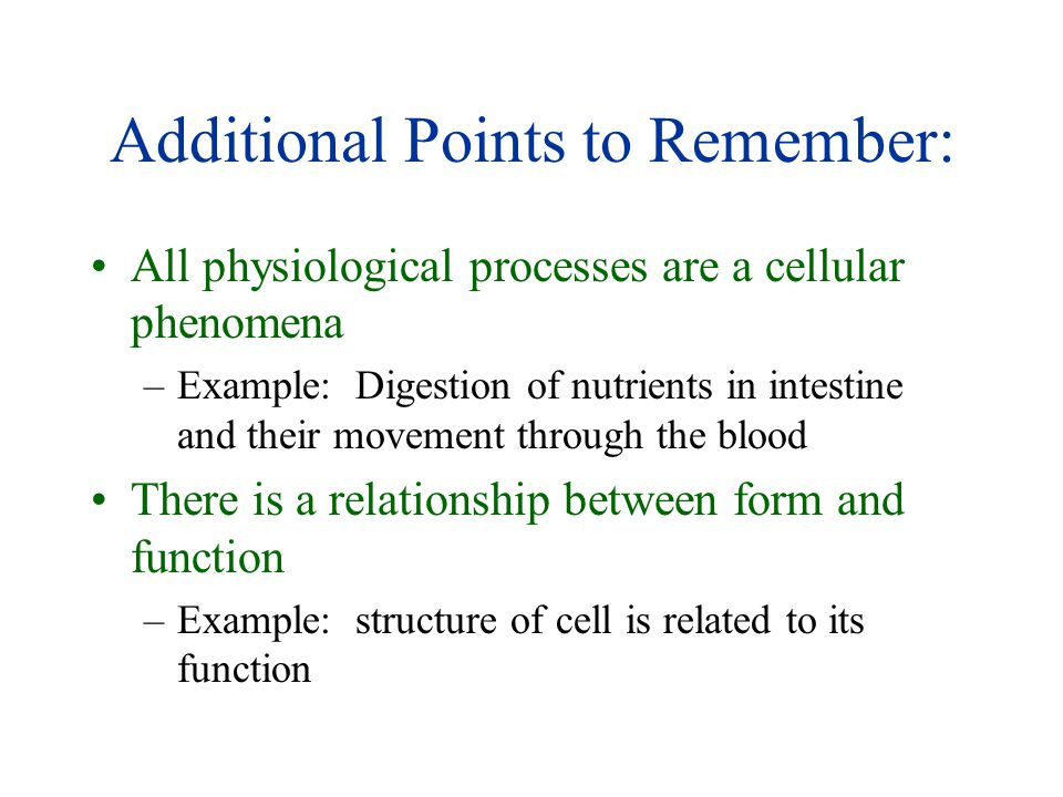 Additional Points to Remember: All physiological processes are a cellular phenomena –Example: Digestion of nutrients in intestine and their movement through the blood There is a relationship between form and function –Example: structure of cell is related to its function