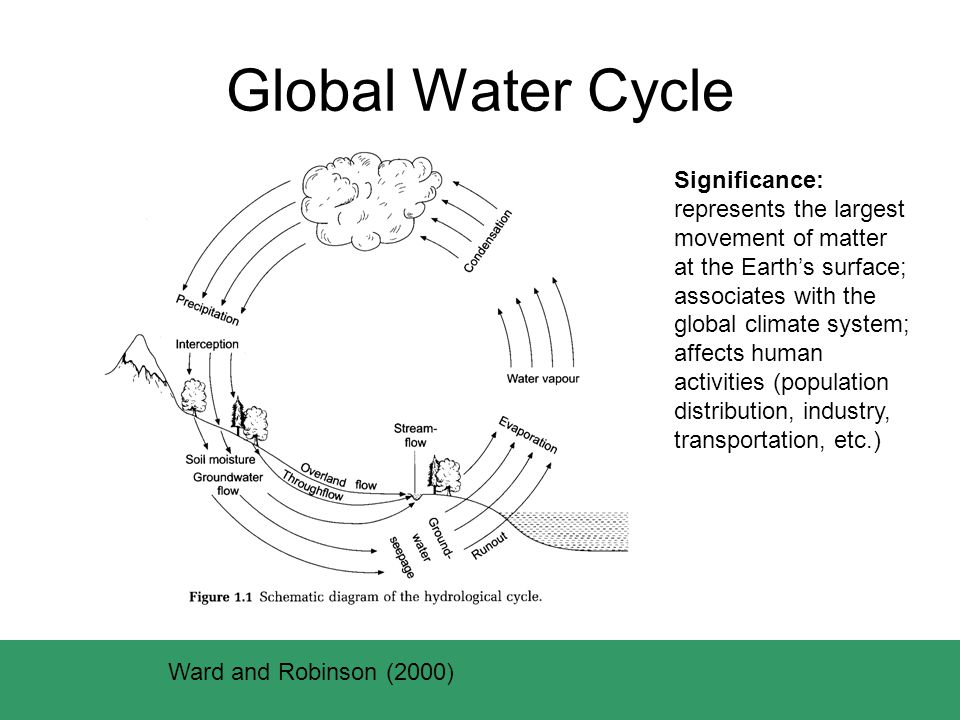 Global Water Cycle Ward and Robinson (2000) Significance: represents the largest movement of matter at the Earth's surface; associates with the global climate system; affects human activities (population distribution, industry, transportation, etc.)