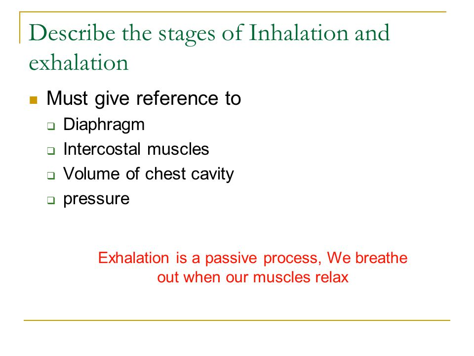 Describe the stages of Inhalation and exhalation Must give reference to  Diaphragm  Intercostal muscles  Volume of chest cavity  pressure Exhalati