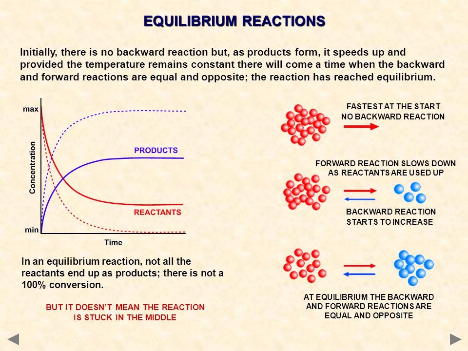 Initially, there is no backward reaction but, as products form, it speeds up and provided the temperature remains constant there will come a time when the backward and forward reactions are equal and opposite; the reaction has reached equilibrium.