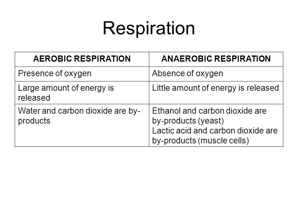 Respiration AEROBIC RESPIRATIONANAEROBIC RESPIRATION Presence of oxygenAbsence of oxygen Large amount of energy is released Little amount of energy is