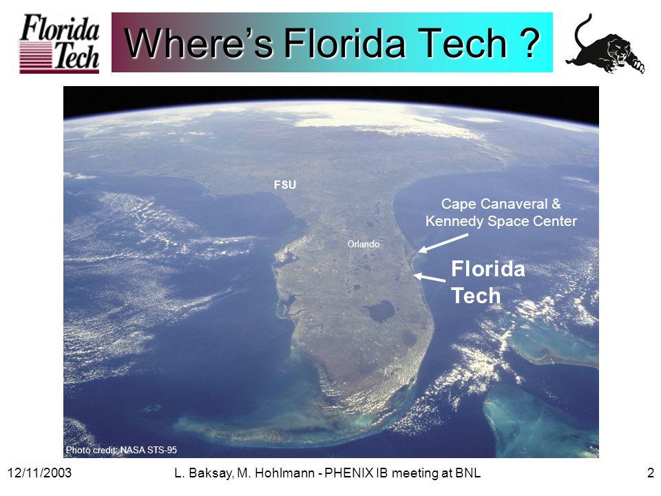 12/11/2003L.Baksay, M. Hohlmann - PHENIX IB meeting at BNL3 What's Florida Tech .