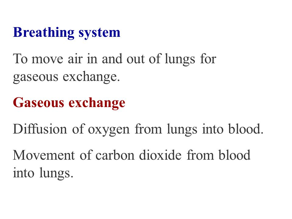 respiration §Sugar is oxidised to release energy, carbon dioxide and water are formed.
