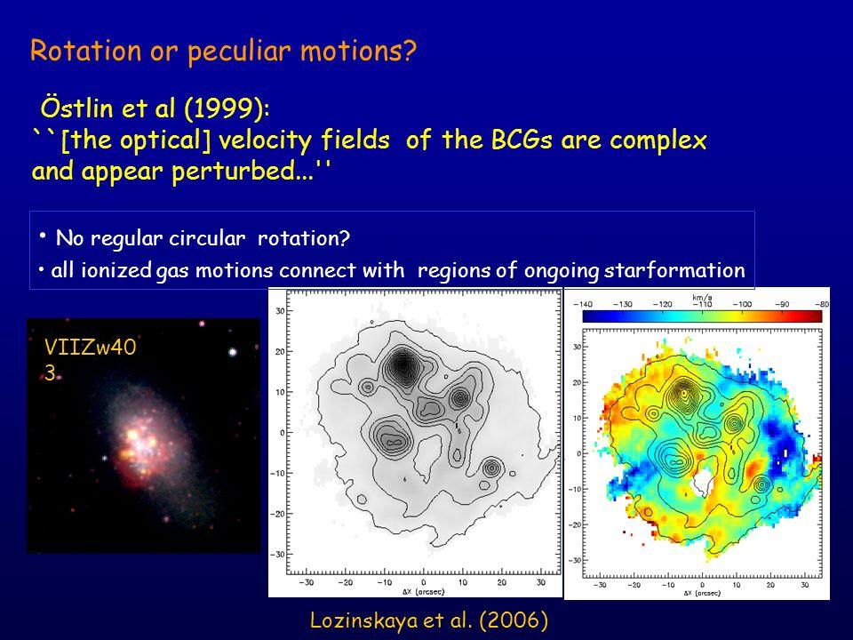 Rotation or peculiar motions. H  -image No regular circular rotation.