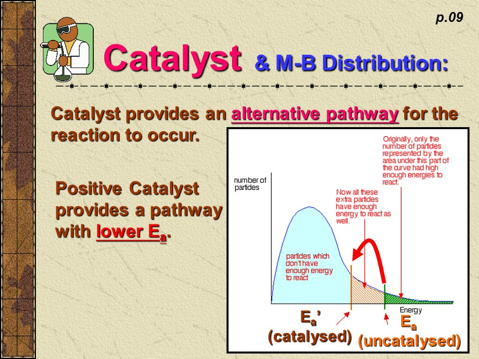 p.09 Catalyst & M-B Distribution: Catalyst provides an alternative pathway for the reaction to occur.