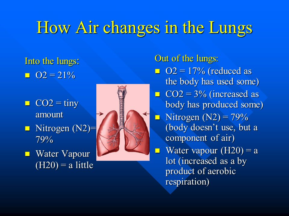 How Air changes in the Lungs Into the lungs : O2 = 21% O2 = 21% CO2 = tiny amount CO2 = tiny amount Nitrogen (N2)= 79% Nitrogen (N2)= 79% Water Vapour (H20) = a little Water Vapour (H20) = a little Out of the lungs: O2 = 17% (reduced as the body has used some) CO2 = 3% (increased as body has produced some) Nitrogen (N2) = 79% (body doesn't use, but a component of air) Water vapour (H20) = a lot (increased as a by product of aerobic respiration)
