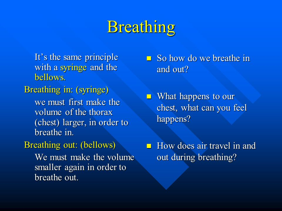 Breathing It's the same principle with a syringe and the bellows.