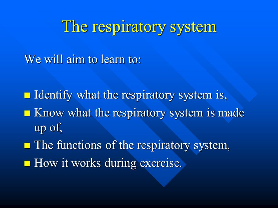 The respiratory system We will aim to learn to: Identify what the respiratory system is, Identify what the respiratory system is, Know what the respiratory system is made up of, Know what the respiratory system is made up of, The functions of the respiratory system, The functions of the respiratory system, How it works during exercise.