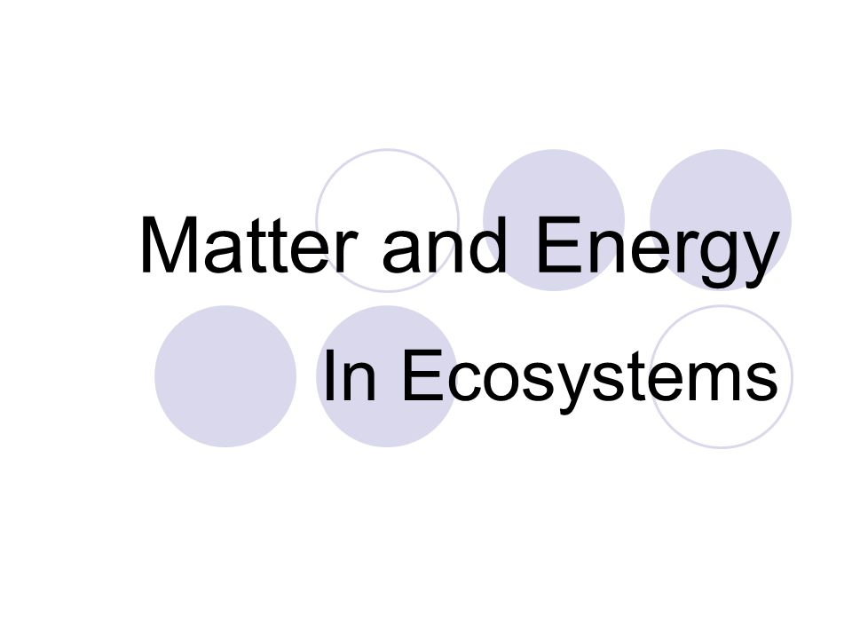 3 Ecosystem Necessities Recycling of Matter (nutrient cycles).
