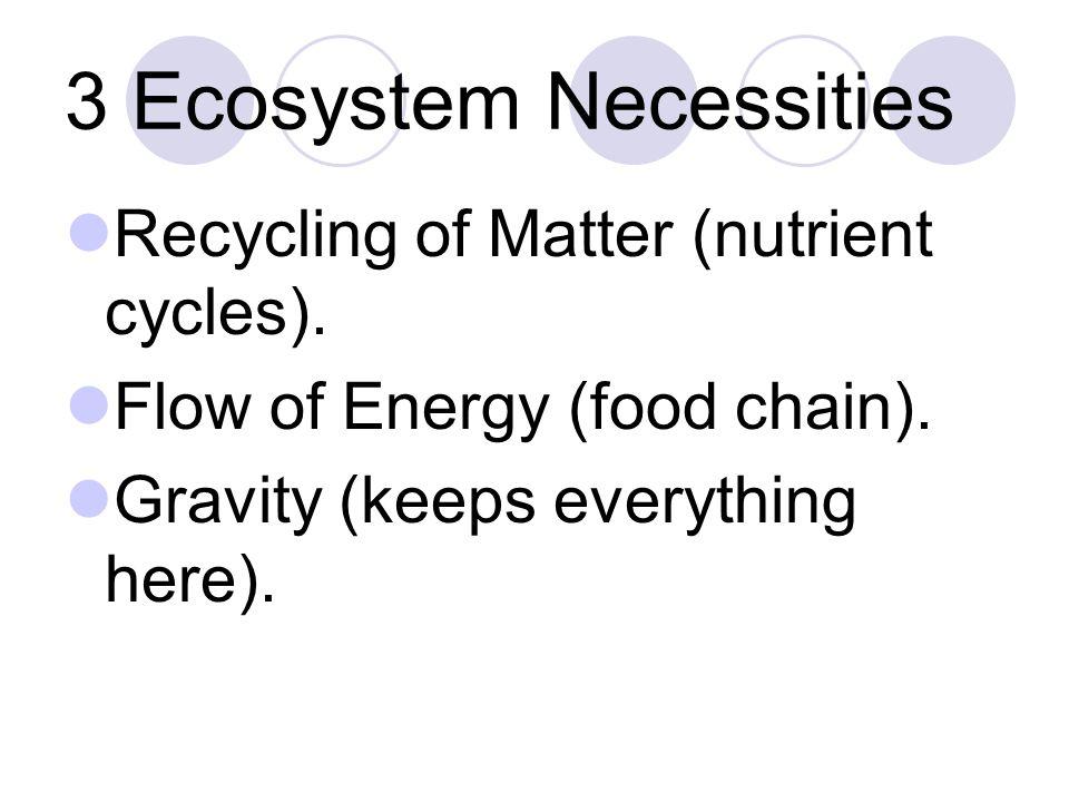 Food Web- interlocked food chains.