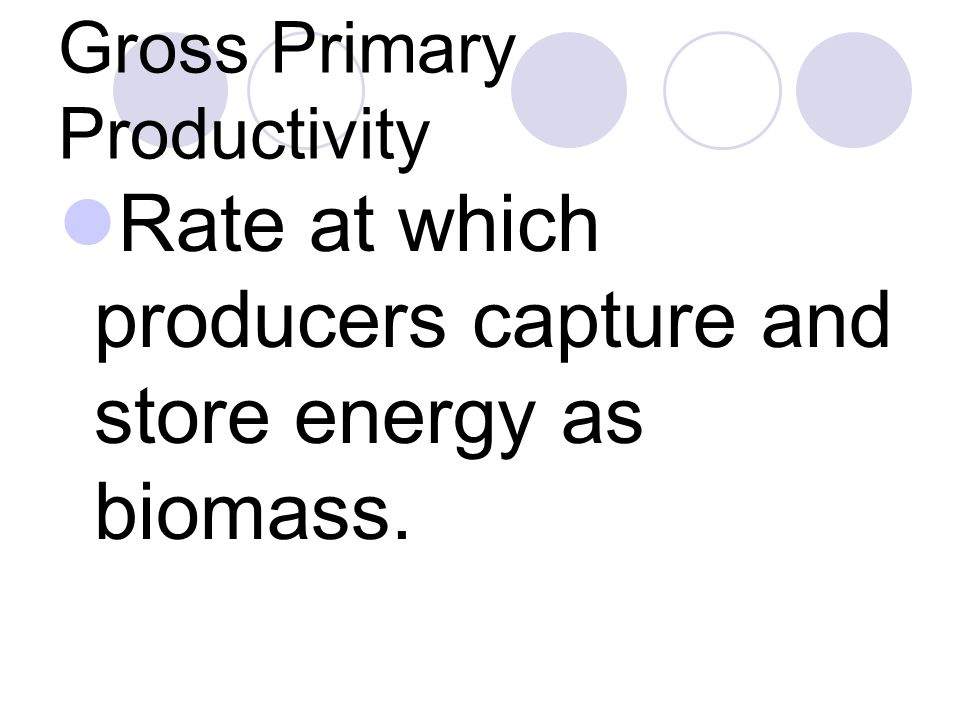 Gross Primary Productivity Rate at which producers capture and store energy as biomass.