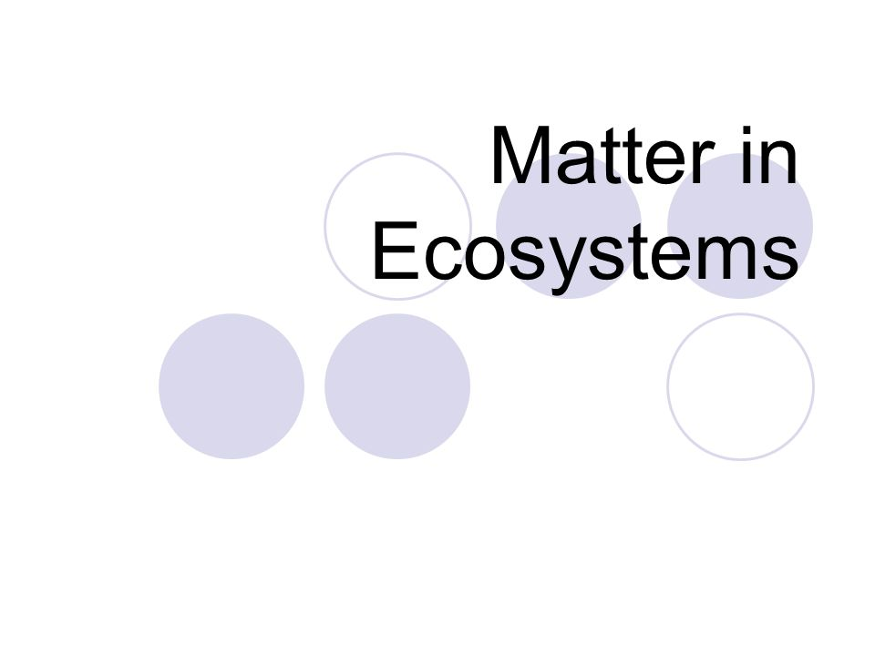 Matter in Ecosystems