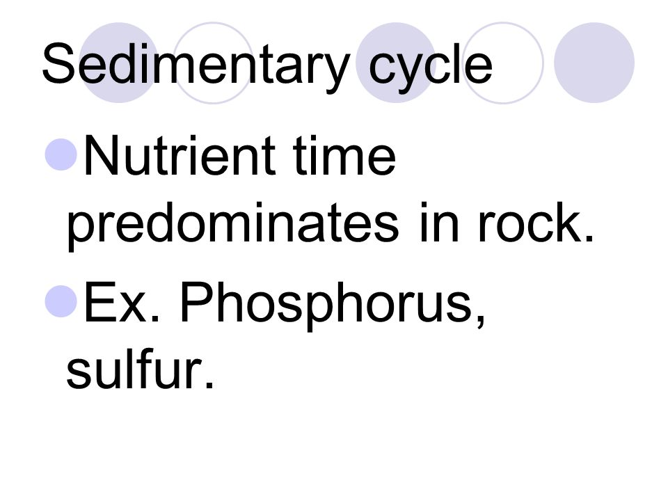 Sedimentary cycle Nutrient time predominates in rock. Ex. Phosphorus, sulfur.