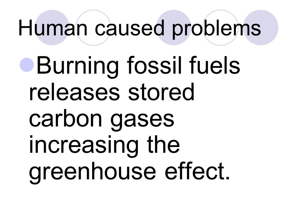 Human caused problems Burning fossil fuels releases stored carbon gases increasing the greenhouse effect.