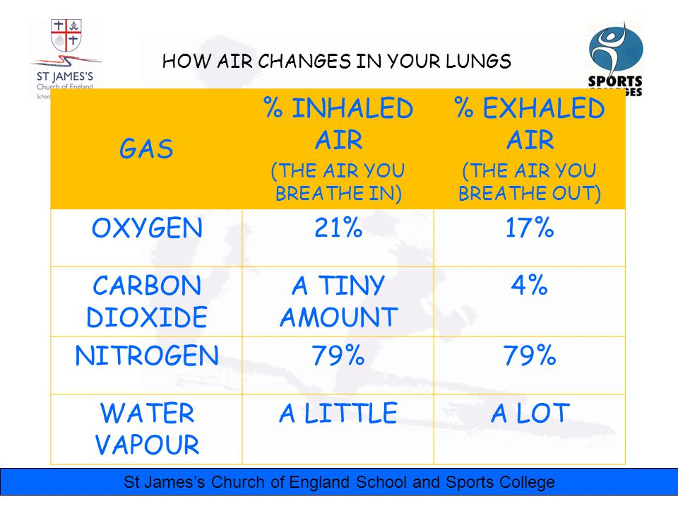 St James's Church of England School and Sports College HOW AIR CHANGES IN YOUR LUNGS GAS % INHALED AIR (THE AIR YOU BREATHE IN) % EXHALED AIR (THE AIR YOU BREATHE OUT) OXYGEN21%17% CARBON DIOXIDE A TINY AMOUNT 4% NITROGEN79% WATER VAPOUR A LITTLEA LOT