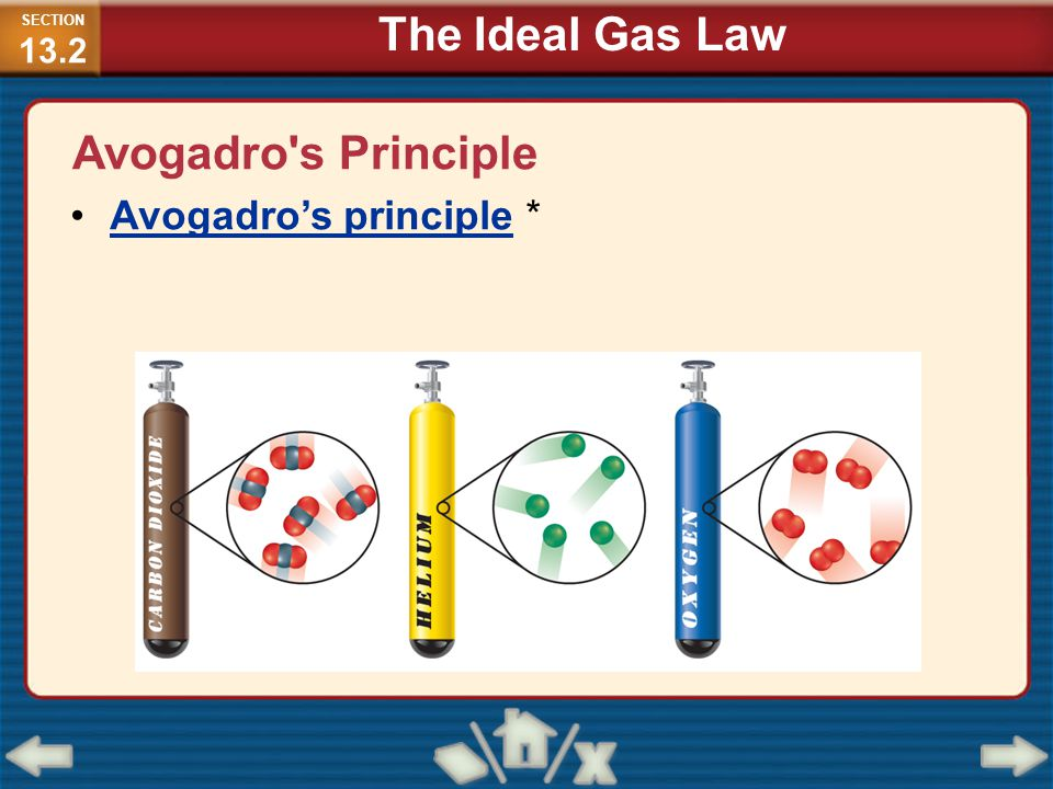 Avogadro's Principle Avogadro's principle * SECTION 13.2 The Ideal Gas Law
