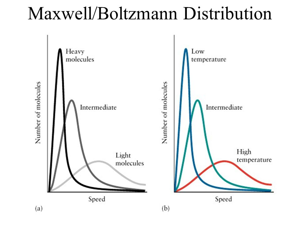 Maxwell/Boltzmann Distribution