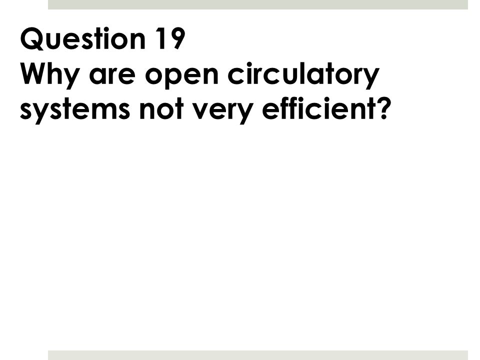 Question 19 Why are open circulatory systems not very efficient?