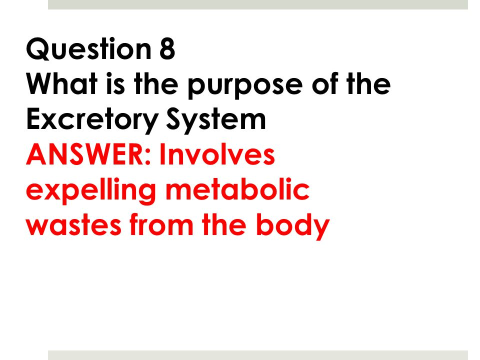Question 8 What is the purpose of the Excretory System ANSWER: Involves expelling metabolic wastes from the body
