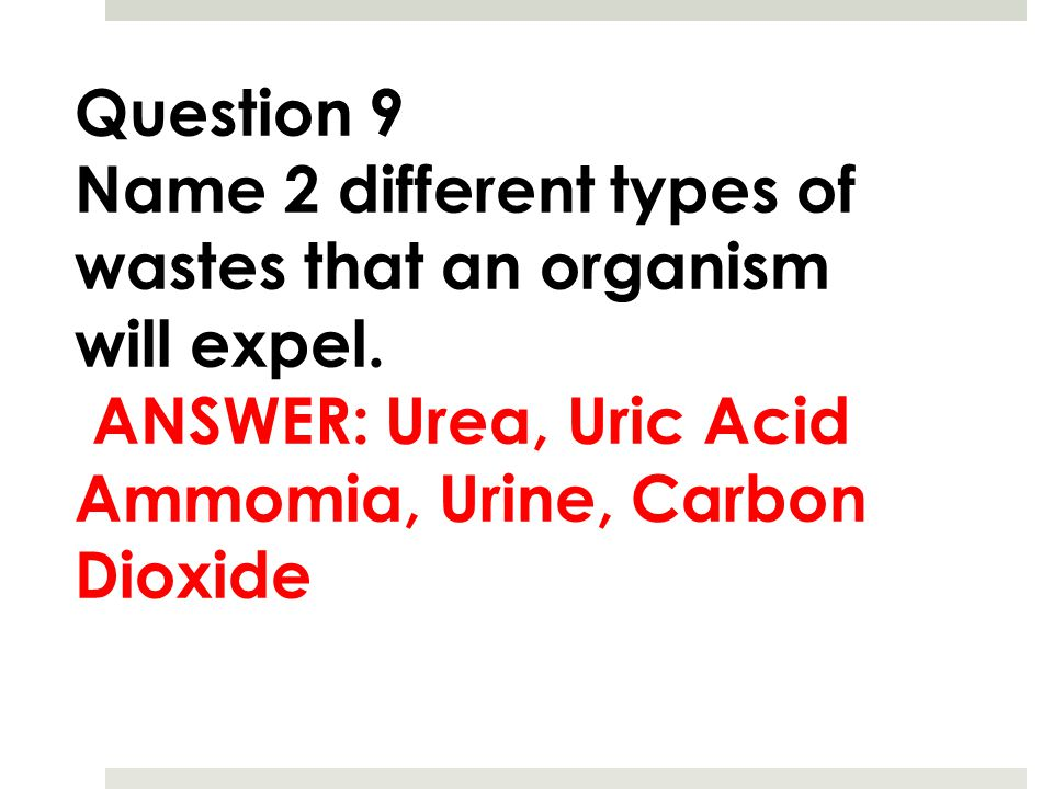 Question 9 Name 2 different types of wastes that an organism will expel. ANSWER: Urea, Uric Acid Ammomia, Urine, Carbon Dioxide