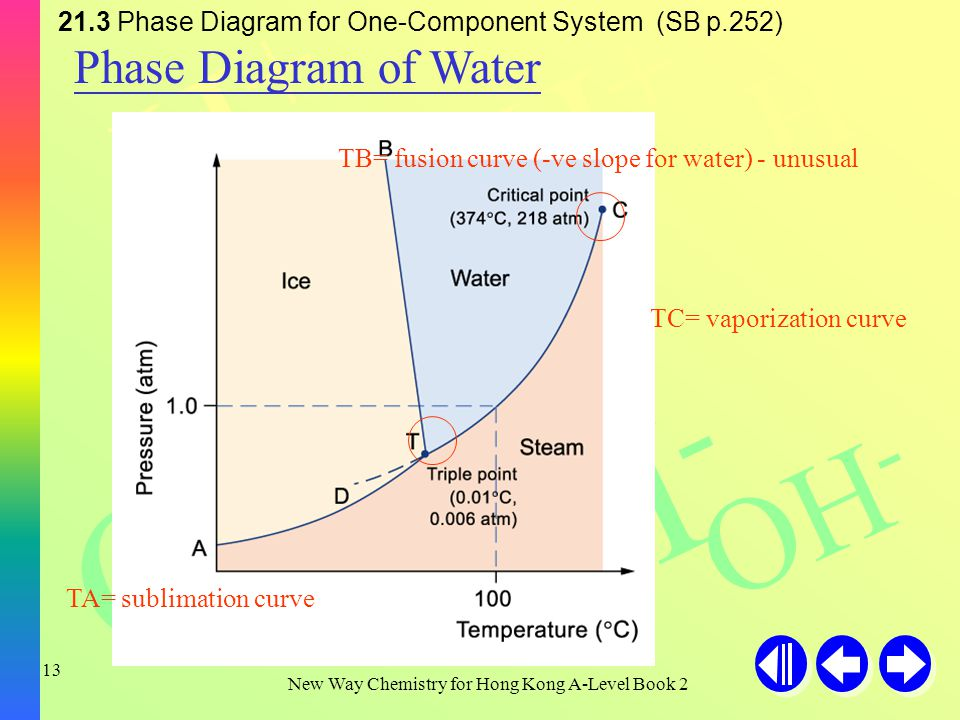 H+H+ H+H+ H+H+ OH - New Way Chemistry for Hong Kong A-Level Book 2 12 21.3 Phase Diagram for One-Component System (SB p.252) The general features of a phase diagram Region/Line/ Point NameDynamic equilibrium RegionSolidOnly solid phase exists.
