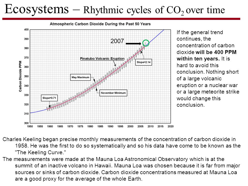 Ecosystems – Rhythmic cycles of CO 2 over time Charles Keeling began precise monthly measurements of the concentration of carbon dioxide in 1958.