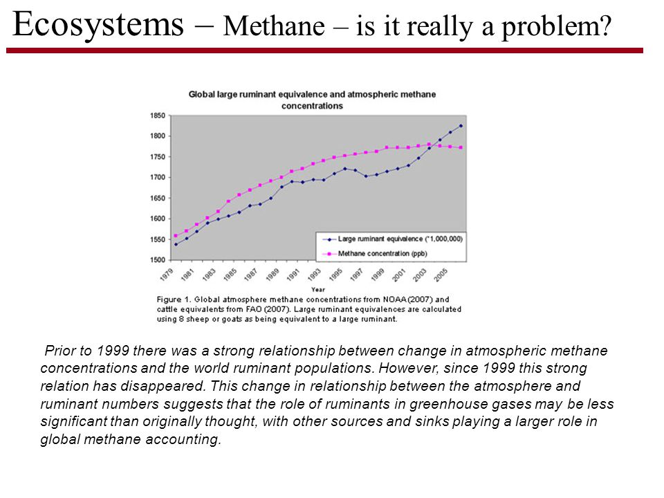 Prior to 1999 there was a strong relationship between change in atmospheric methane concentrations and the world ruminant populations.