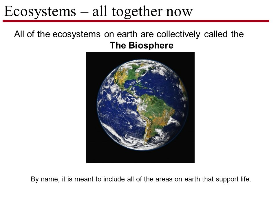 Ecosystems – all together now All of the ecosystems on earth are collectively called the The Biosphere By name, it is meant to include all of the areas on earth that support life.