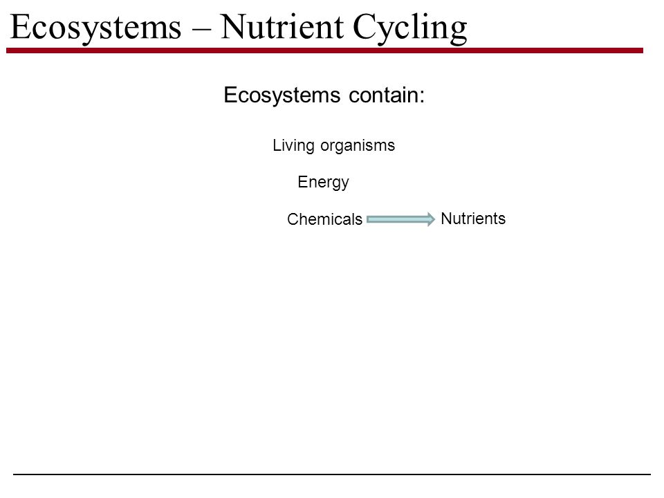 Ecosystems – Nutrient Cycling Ecosystems contain: Living organisms Energy Chemicals Nutrients