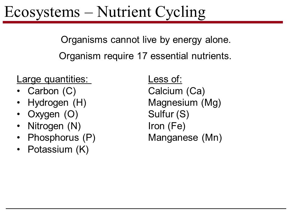 Ecosystems – Nutrient Cycling Organisms cannot live by energy alone.