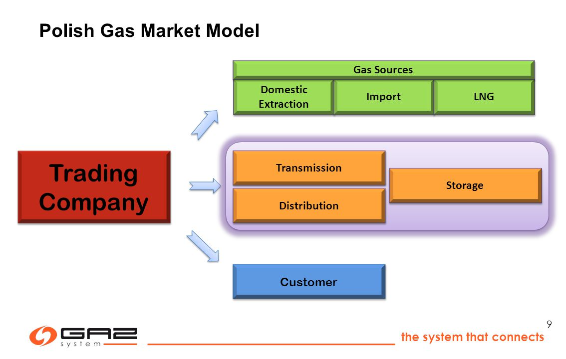 the system that connects 9 Trading Company Customer Domestic Extraction Import LNG Gas Sources Transmission Storage Distribution Polish Gas Market Model